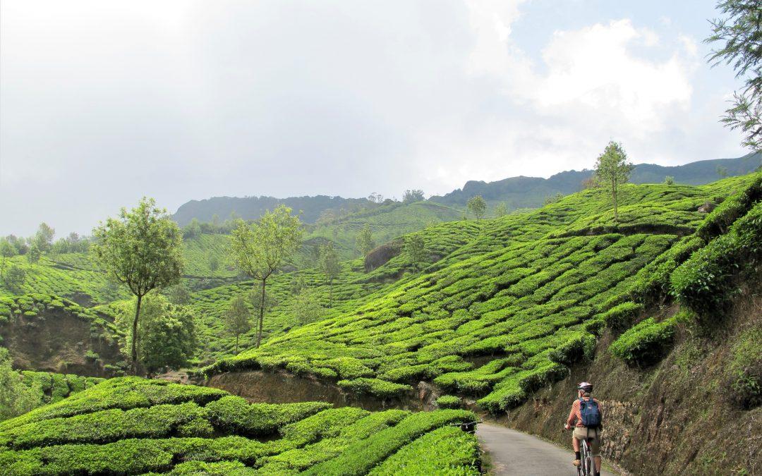På cykel gennem Kerala i Sydindien